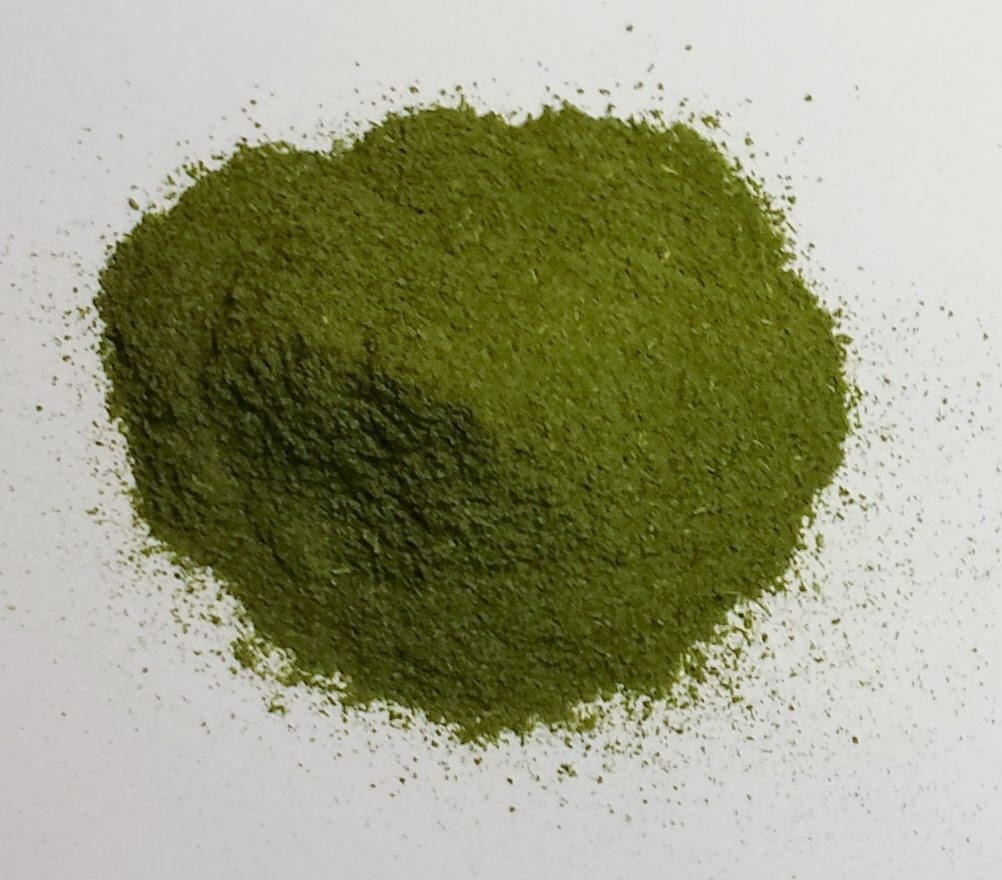 GVmoringa-powder-oxidized-2.jpg