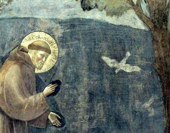 Risultati immagini per Ecologia cristiana e teoria della complessità vedi