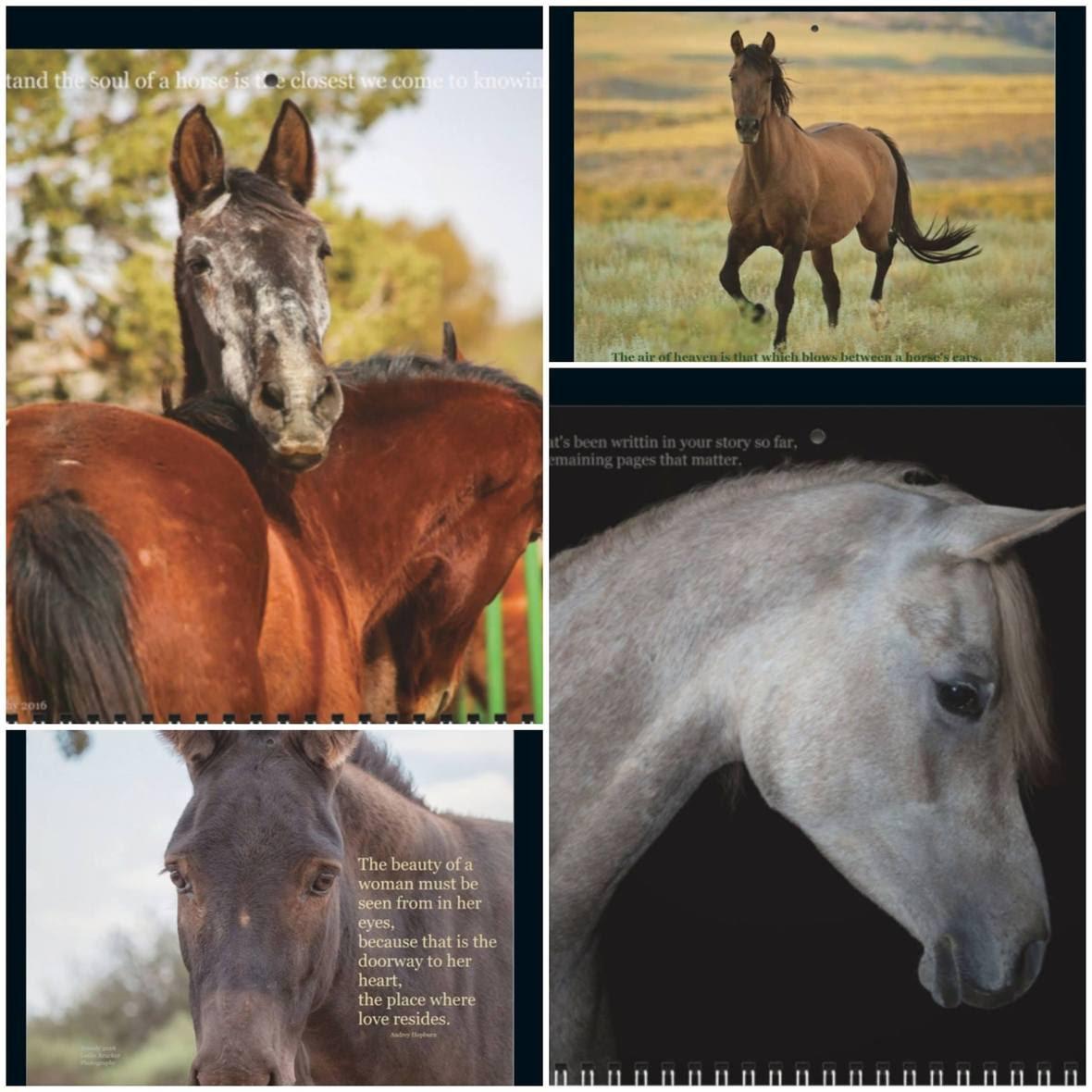 2019 Calendar Collage