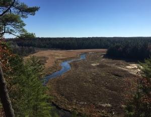 Grand Traverse Conservation District habitat project