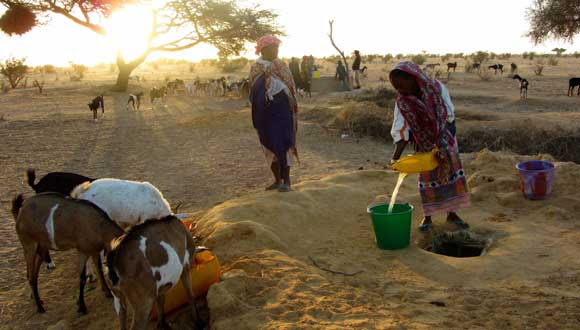 Women of Ngnith collect water in the early morning. Impeding access to water is one way Senhuile restricts village life in Ndiael.