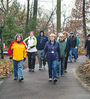 Winter Wellness Walks