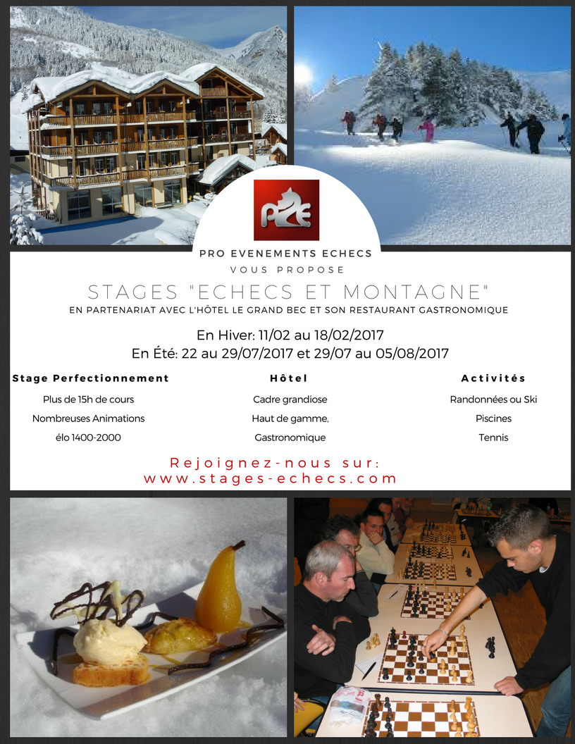 Affiche_stag...