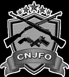 CNJFOLogo.ico