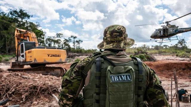 Testemunhas dizem que 3.000 cargas de madeira saíram do Pará para exterior sem autorização