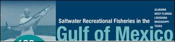 Gulf Snapshot banner