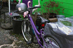 purple bike
