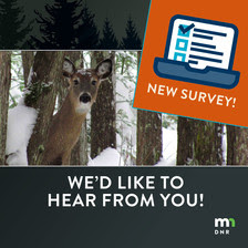 We'd like to hear from you survey graphic