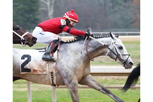 Silver Prospector moves up along the rail while rounding the turn for home in the Southwest Stakes at Oaklawn Park