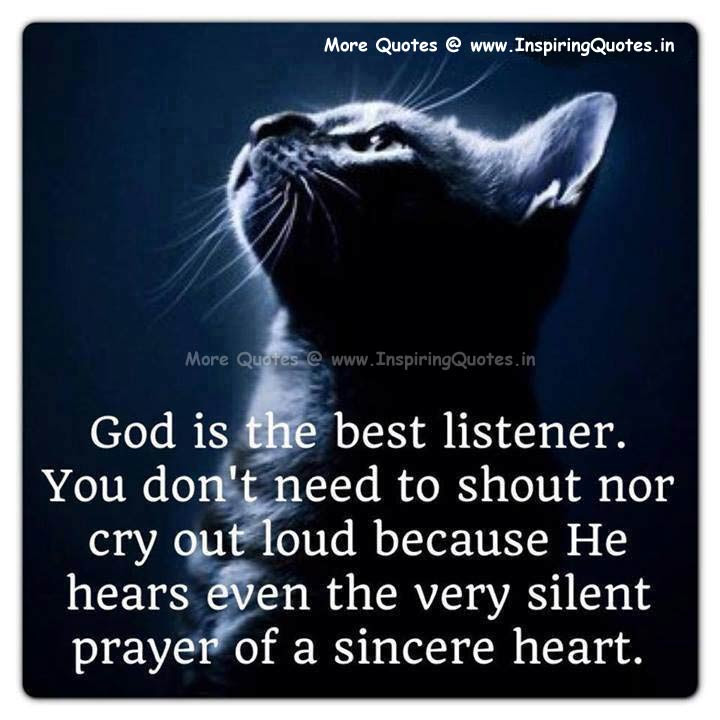 cat prayer