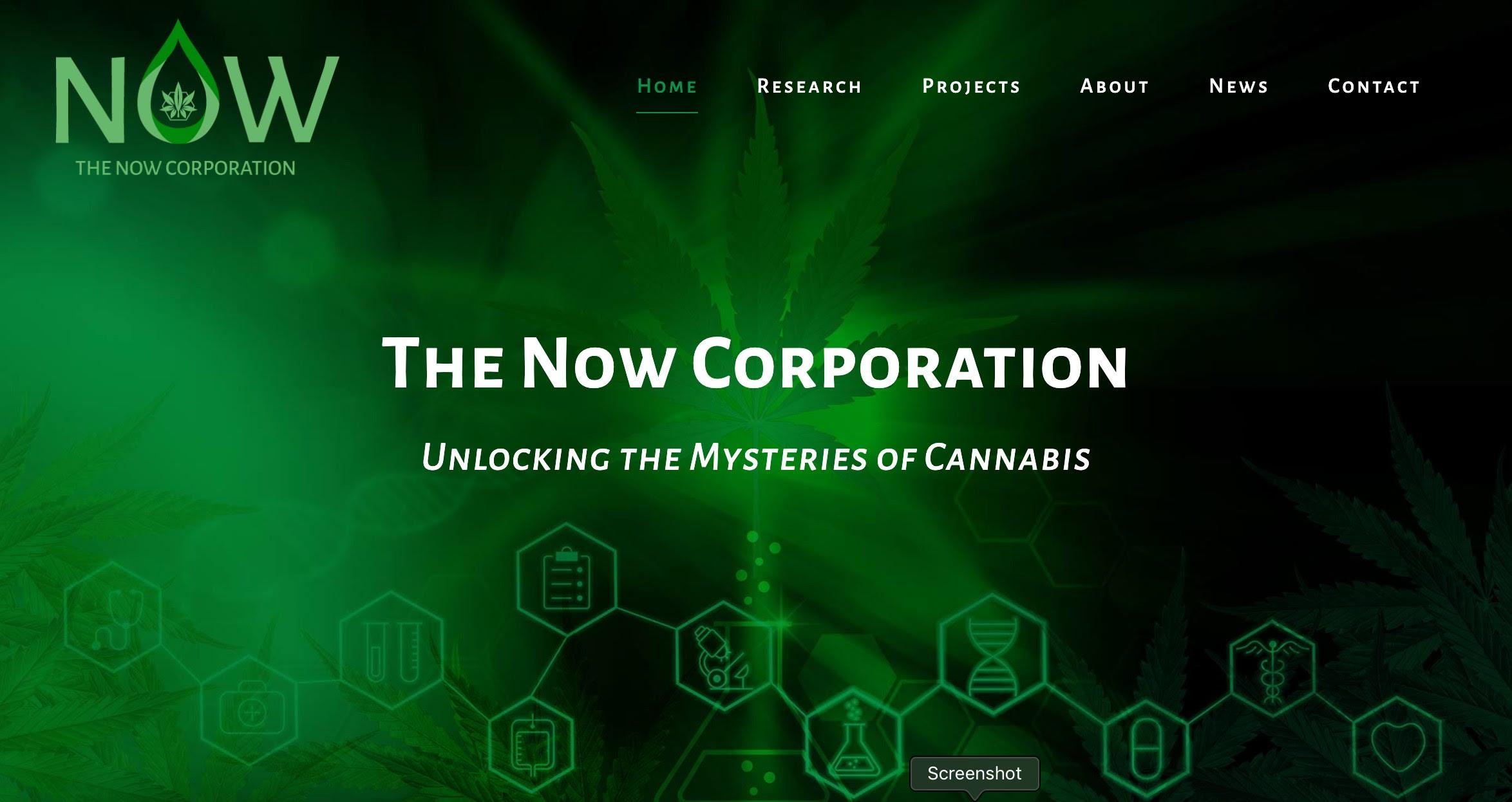 The Now Corporation (OTC:NWPN) | LinkedIn