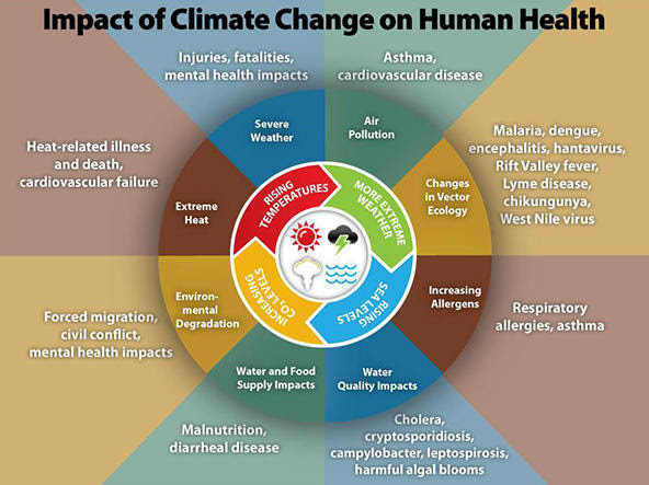 impact of climate on human health