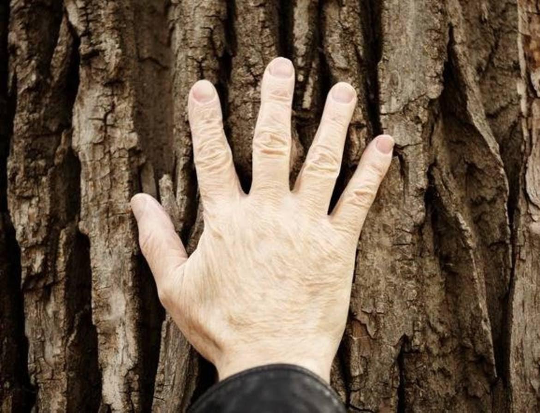 La non trasmissibilità dell'esperienza bioregionale e spirituale
