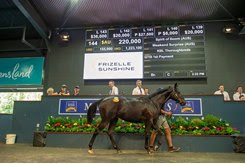 A Spirit Of Boom colt brings the session-topping price at the Magic Millions Gold Coast Yearling Sale