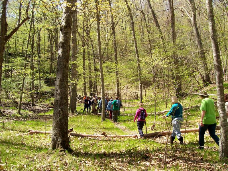 Sprin Hike in Sprague