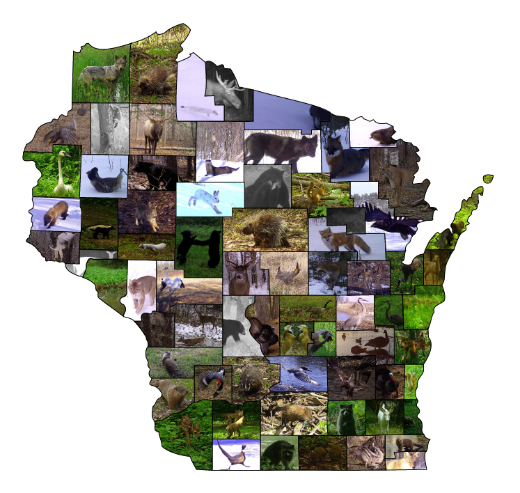 images of wildlife assembled into the shape of Wisconsin
