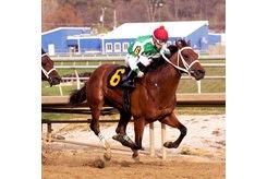Diamond King wins the Federico Tesio Stakes at Laurel Park