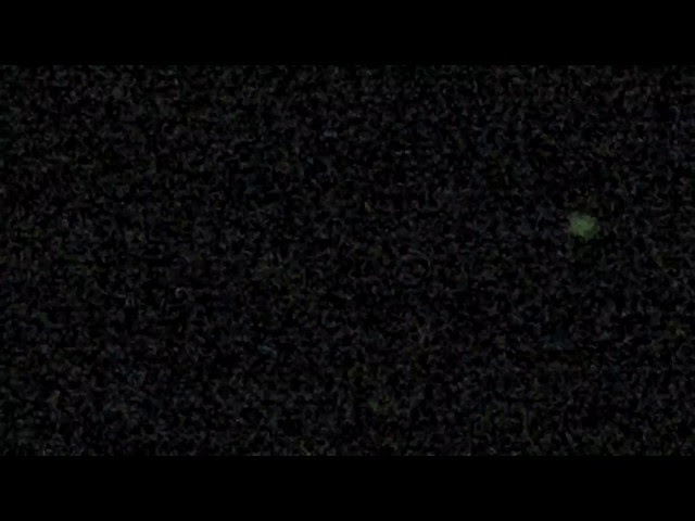 UFO News ~ UFOs Visiting Our Sun Daily and MORE Sddefault