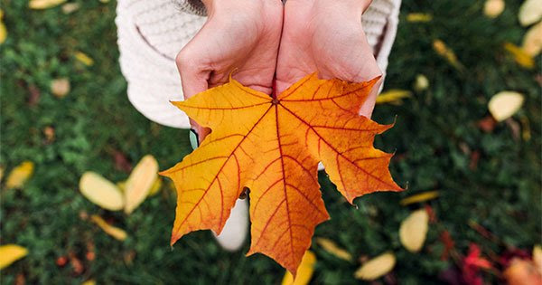 5 Reasons to Sell This Fall | Keeping Current Matters
