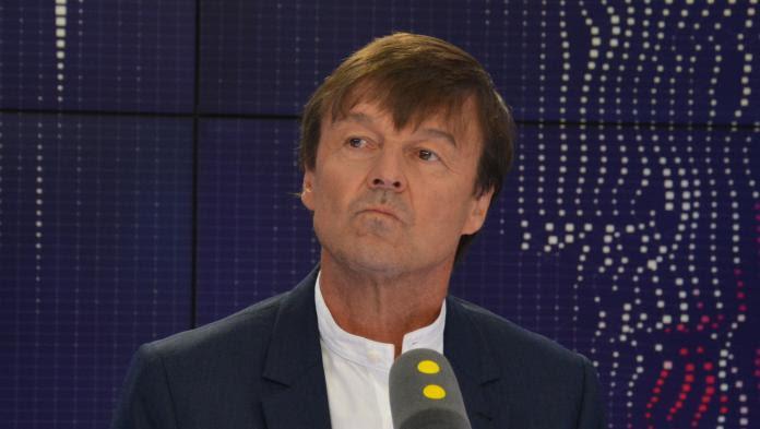 Nicolas Hulot confie avoir voté Benoît Hamon au premier tour de l'élection présidentielle