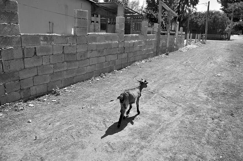 Asentamiento en Instrucciones y Aparicio Saravia. Foto: Javier Calvelo (archivo, octubre de 2013)