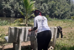 Distributing hygiene information in Cameroon