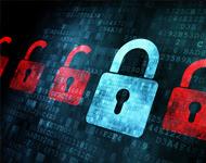 ONGs apoiam PL sobre proteção de dados pessoais