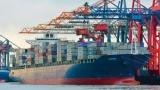 Box ship demand stable despite bunker price slump