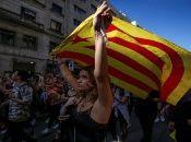 Los ciudadanos fueron capturados en Barcelona, Girona, Lleida yTarragona y puestos sucesivamente a la orden de la justicia.