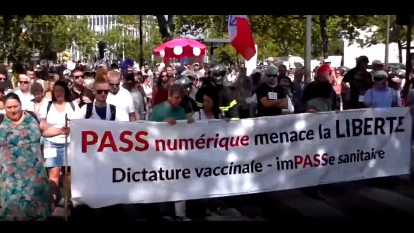 Worldwide Freedom Protests: A Glimpse at the Massive, Spirited Crowds Overflowing the Streets in Australia, UK, France & the Netherlands Protests3-1320x743