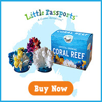 Create your own colorful coral...