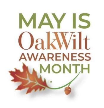 May is Michigan Oak wilt awareness month logo - with acorn and oak leaf