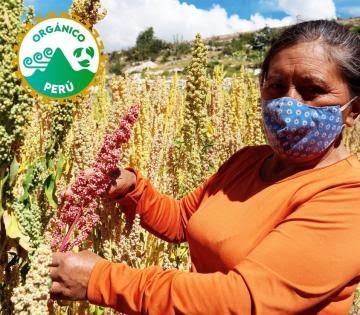 Midagri anuncia la creación del Sello nacional de producción orgánica para mejorar la competitividad del sector en el país