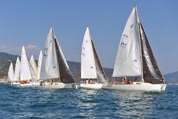 J/80s sailing Italian Nationals off Chiavari, Italy