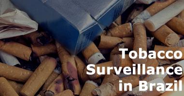 Tobacco Surveillance in Brazil