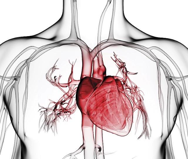 Durante la pandemia, mantente alerta a los síntomas de las enfermedades del corazón