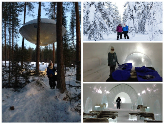inside and outside of the UFO treehouse and the Birdsnest treehouse in Sweden