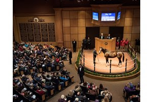 The sale of elite fillies and mares, such as Songbird for $9.5 million, added to Fasig-Tipton's share of total sales in the combined Kentucky mixed sales marketplace, which surged to 27%