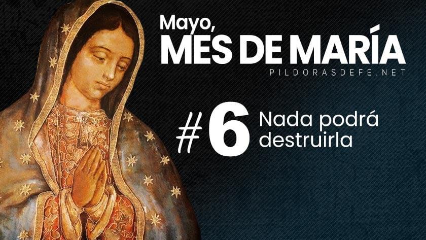 Mayo, mes de María. Día 6: Nada podrá destruirla