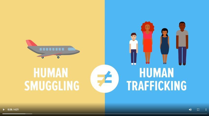 infographic video still image. human smuggling does not equal human trafficking.