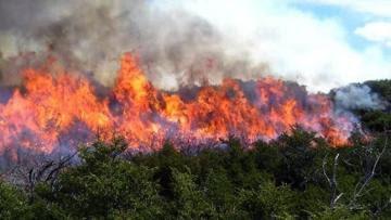 Cusco, Junín y Puno son los departamentos con mayores alertas de incendios forestales en lo que va del año