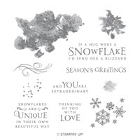 Beautiful Blizzard Clear-Mount Stamp Set
