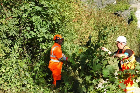 Public information event to discuss vegetation management work in Lancaster