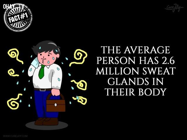 1. Một người trung bình có 2,6 triệu tuyến mồ hôi trong cơ thể.,mồ hôi,đổ mồ hôi,sự thật thú vị,sự thật kỳ lạ,những điều thú vị trong cuộc sống,có thể bạn chưa biết