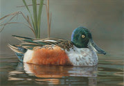 A painting of a duck.