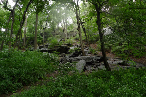 Image result for inwood hill park
