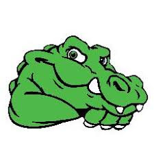 Image result for gators
