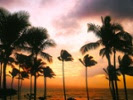 Hawaii educators work to build online portal