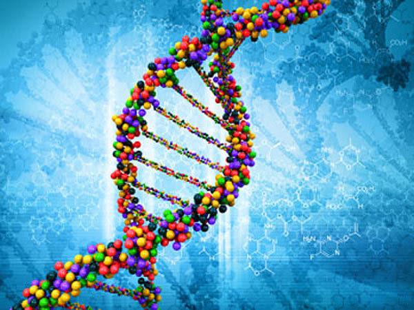 6359842815382144971057983032 DNA