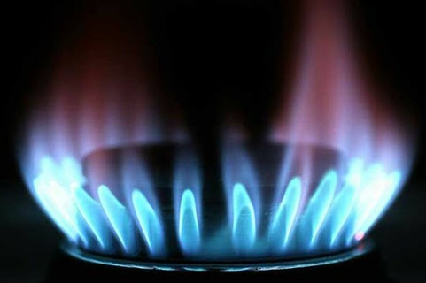 Gas Fueled Cooker